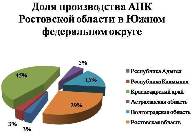 Челябинской области не нужны бухгалтеры, юристы и экономисты