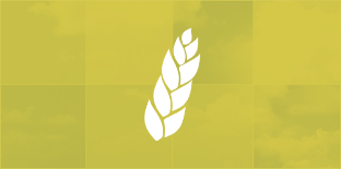 «Фактор-Агро». Мониторинг сельского хозяйства региона
