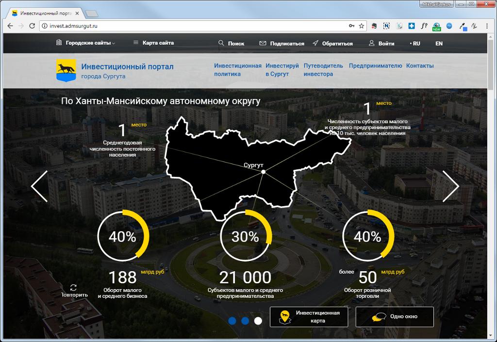 Инфографика на главной странице портала