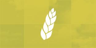 «Фактор-Агро». Мониторинг сельского хозяйства и продовольствия региона.
